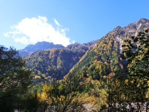 Autumn leaves in Kamikochi Valley